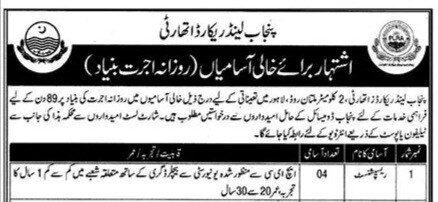 Punjab Land Record Authority Jobs