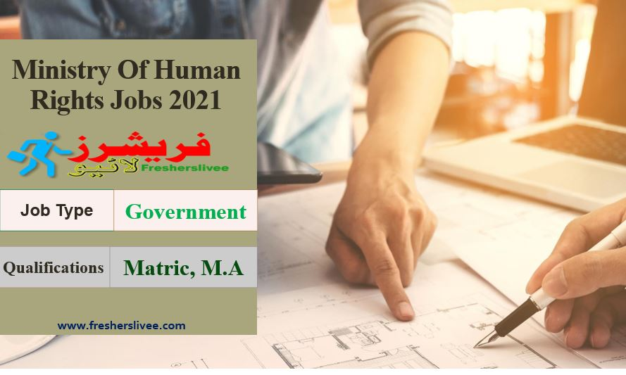 Human Rights Jobs