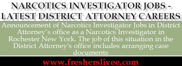 Narcotics Investigator Jobs
