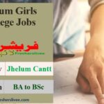 Jobs In Jhelum